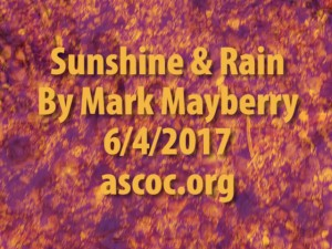 2017-06-04-am-MM-SunshineAndRain_Moment