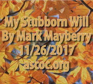 2017-11-26-am-MM-MyStubbornWill_Moment
